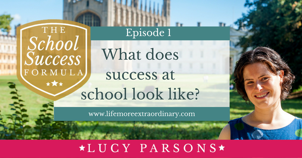 What does success at school look like-